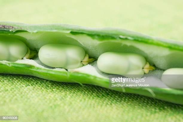 broad bean split open to reveal beans, close-up - open source photos et images de collection