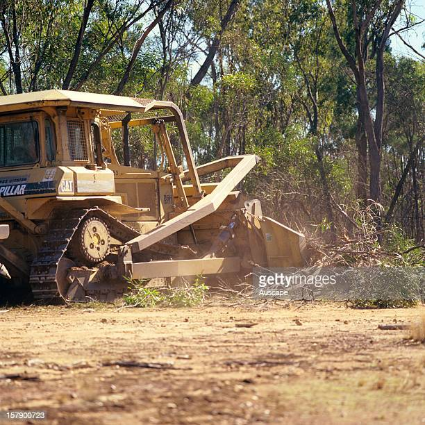 Broadacre clearing of native open eucalypt/cypress forest Western Darling Downs Queensland Australia