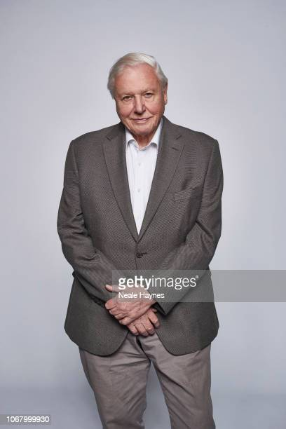 Broadcaster and naturalist David Attenborough is photographed for the Daily Mail on October 2 2018 in London England