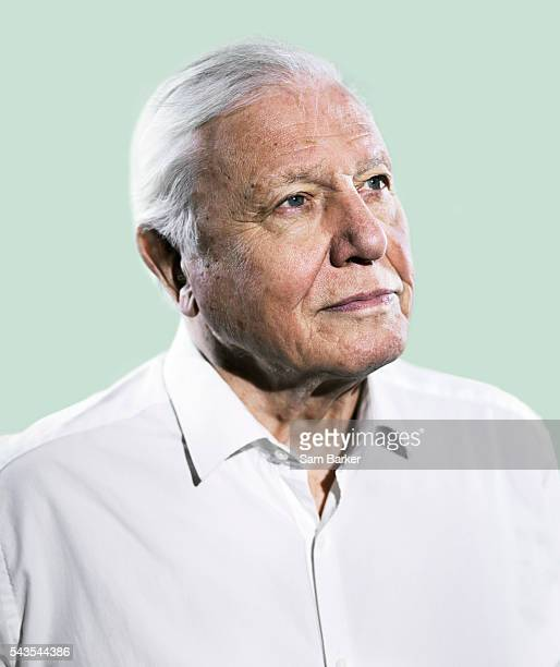 David Attenborough Foto E Immagini Stock Getty Images