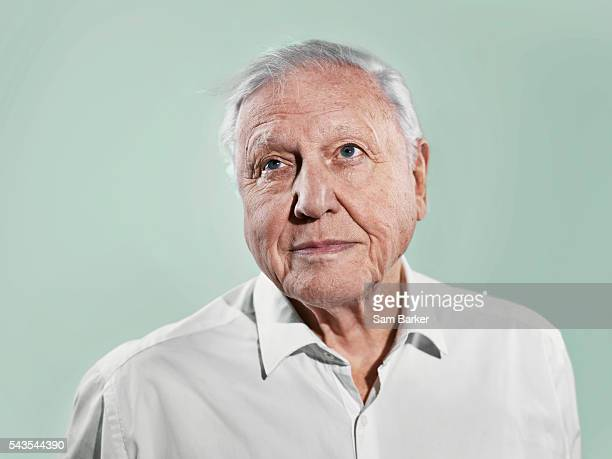 Broadcaster and naturalist David Attenborough is photographed for the Sunday Times magazine on December 10 2015 in London England