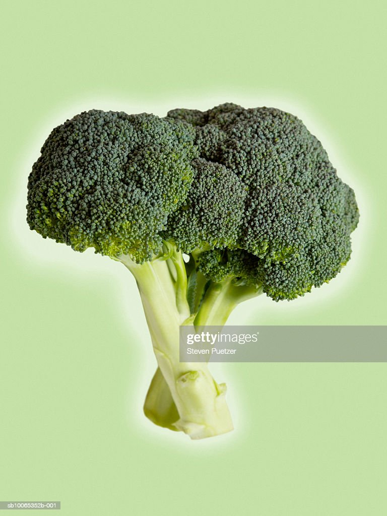 Broccoli against green colored background : Foto stock