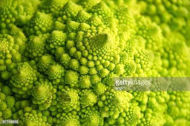 broccoli floreale - cavolo cappuccio verde foto e immagini stock