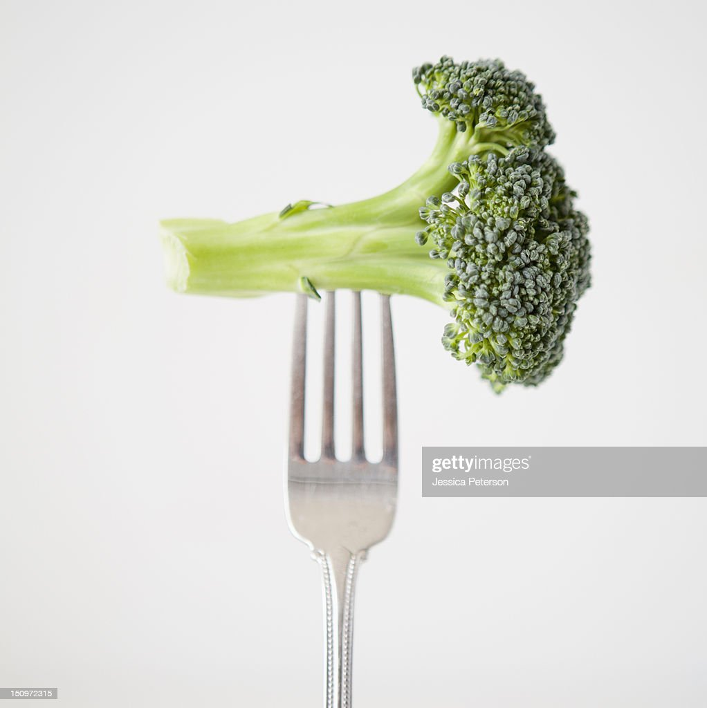Broccoli on fork, studio shot : Stock Photo