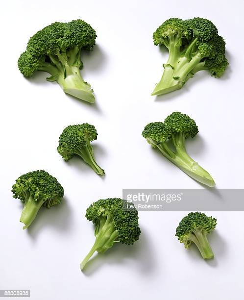 broccoli on white - cabbage family stock photos and pictures