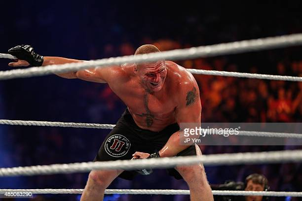 Brock Lesnar in action during his fight against The Undertaker at the WWE SummerSlam 2015 at Barclays Center of Brooklyn on August 23, 2015 in New...