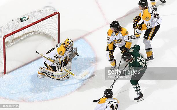 Brodie Barrick of the Sarnia Sting stops a shot from Max Domi of the London Knights during an OHL game at the Budweiser Gardens on January 24 2014 in...