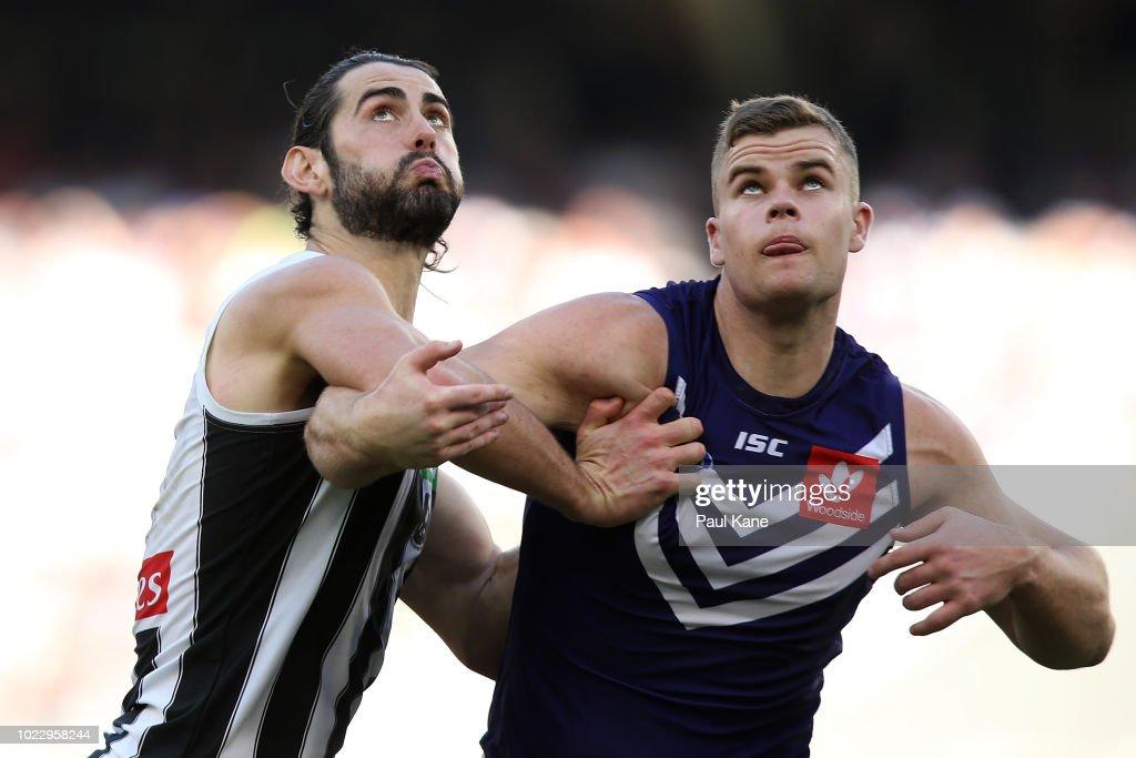AFL Rd 23 - Fremantle v Collingwood : News Photo