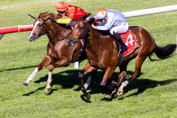 AUS: Sydney Racing