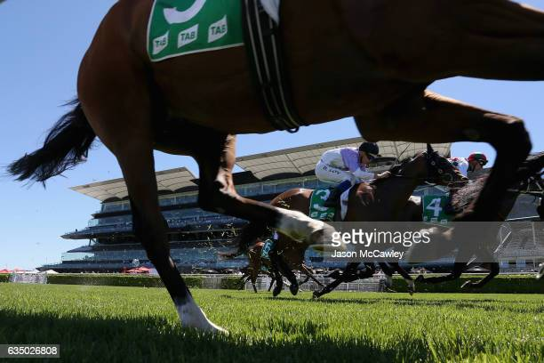 SYDNEY AUSTRALIA FEBRUARY Brodie Loy riding Circle Game during Race 2 in the TAB Highway Handicap at Royal Randwick Racecourse on February 13 2017 in...
