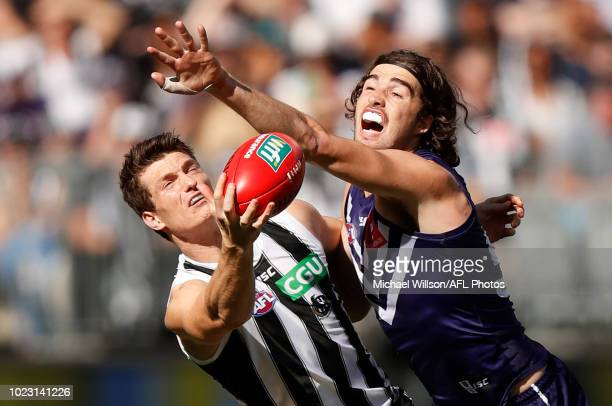 Brody Mihocek of the Magpies and Alex Pearce of the Dockers compete for the ball during the 2018 AFL round 23 match between the Fremantle Dockers and...