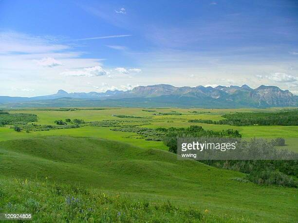 brokeback mountain country 2 - foothills stock pictures, royalty-free photos & images