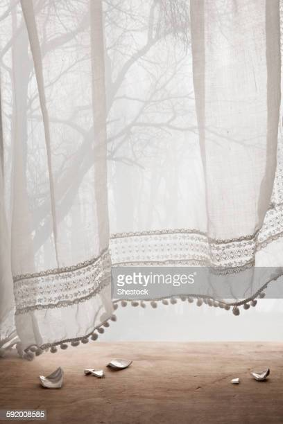 broken ceramic shards under sheer curtains - frilly stock photos and pictures