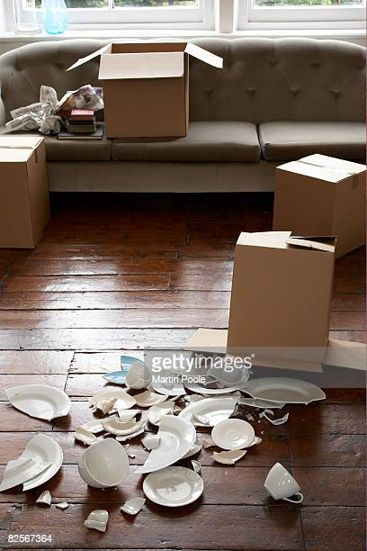 broken crockery next to cardboard box
