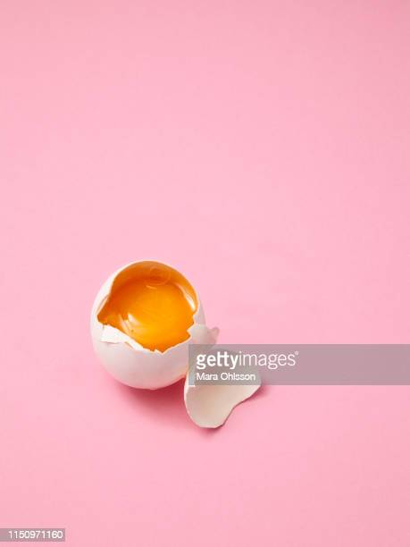 broken egg on pink background - animal egg stock pictures, royalty-free photos & images