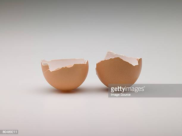 broken egg - hatching stock photos and pictures