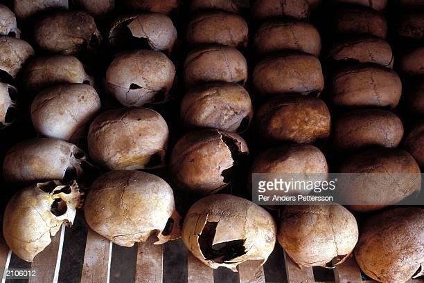 Broken human skulls lie on display at the Murambi memorial site February 23 2003 in Murambi Rwanda 10000 Rwandans who sought refuge at the technical...