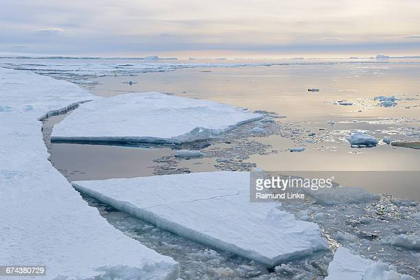 broken pack ice with ice floes at sunrise - weddell sea - fotografias e filmes do acervo