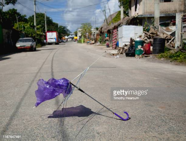 broken purple umbrella in the middle of a road; tulum, quintana roo, mexico - timothy hearsum stock photos and pictures