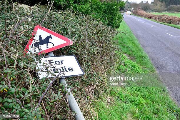 Broken rural road sign, horses
