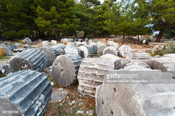 broken sections of columns at the ruins of the sanctuary of athena - priene stock photos and pictures