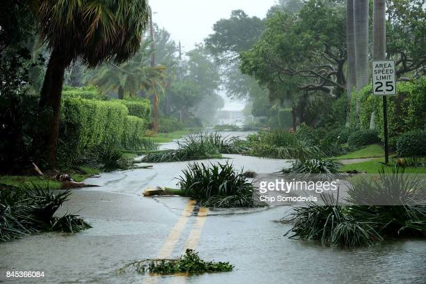 Broken tree branches block roads in the Coral Beach neighborhood as Hurricane Irma hits the southern part of the state September 10 2017 in Fort...