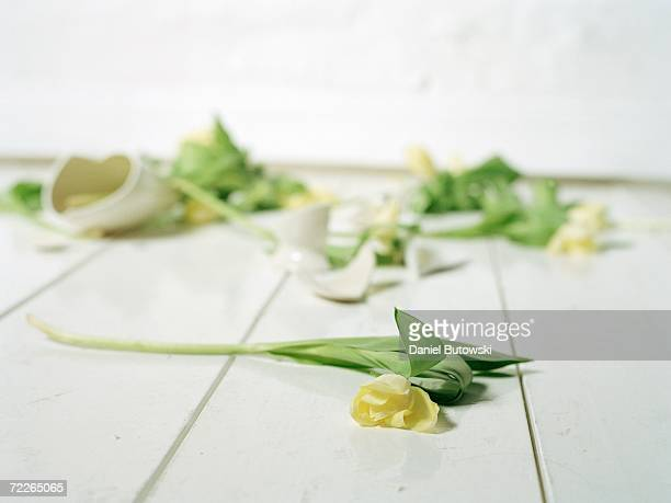 Broken vase and flowers on floor (focus on foreground)