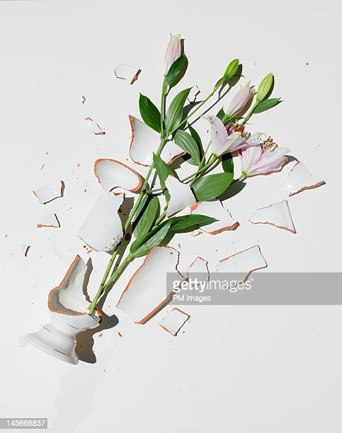 broken vase with pink lilies - vase stock pictures, royalty-free photos & images