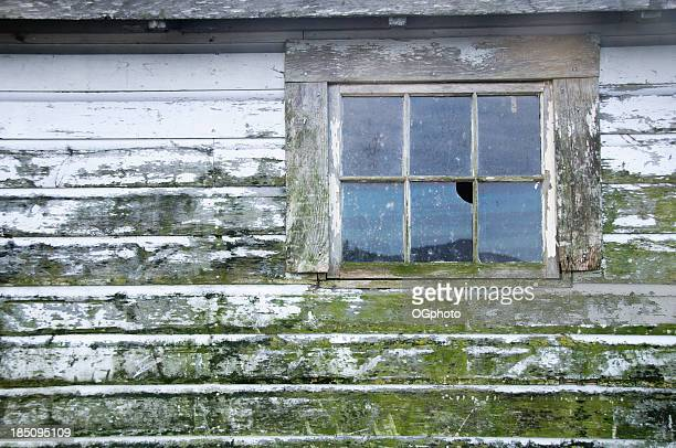 broken window on mold covered wall - ogphoto stock photos and pictures