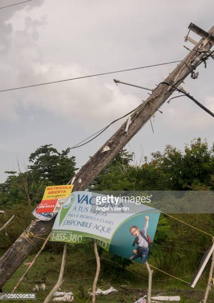 Broken wooden pole on the side of PR3 with advertising for vaccination of children on September 19 2018 in Luquillo Puerto Rico Hurricane Maria...