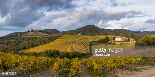 Brolio castle and its vineyards. Radda in Chianti, Siena province, Tuscany