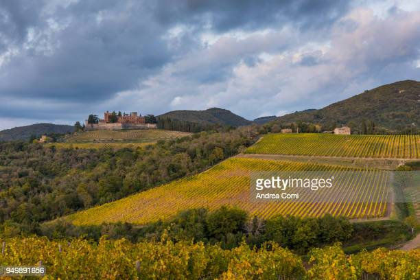 Brolio castle and its vineyards. Radda in Chianti, Siena, Tuscany