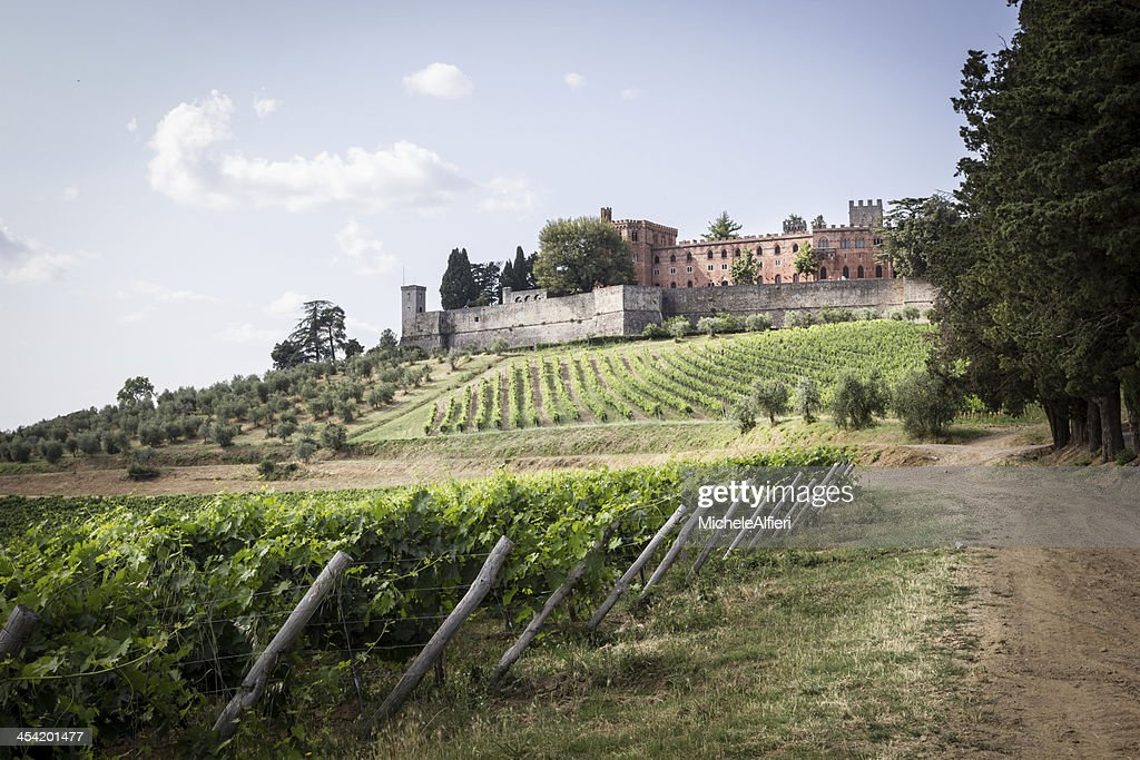Brolio Castle and the nearby vineyards : Stock Photo