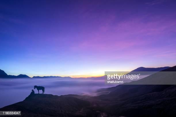 bromo horseman at the mountainside of mount bromo - shaifulzamri stock-fotos und bilder