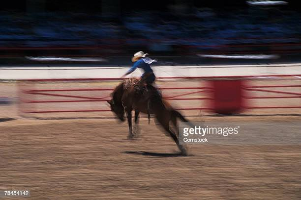 bronco busting in rodeo in cheyenne, wyoming - bronco stadium stock pictures, royalty-free photos & images