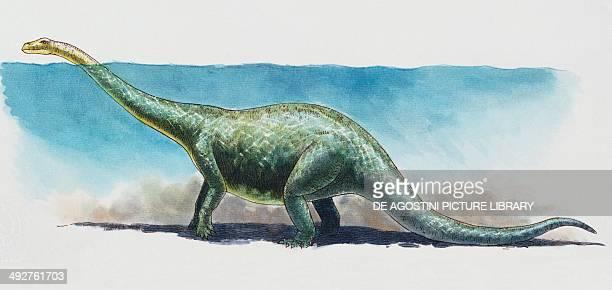 Brontosaurus Diplodocidae Late Jurassic Artwork by James Robins