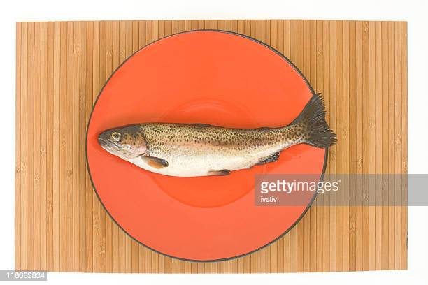 brook trout - speckled trout stock photos and pictures
