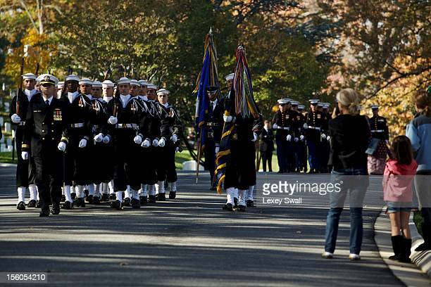 Brooke Abbott of Virginia watches as honor guards from each military branch make their way through Arlington National Cemetery on Veteran's Day...