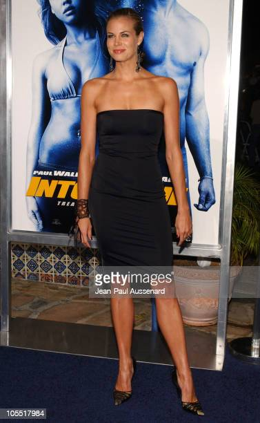 """Brooke Burns during MGM Pictures and Columbia Pictures """"Into the Blue"""" Premiere - Arrivals at Mann Village Theatre in Westwood, California, United..."""