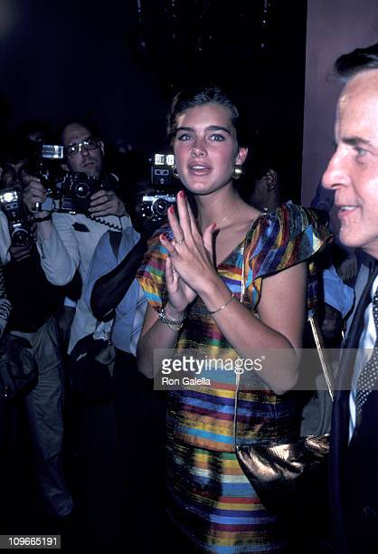 Brooke Shields and Franco Zefferelli during 'Endless Love' New York City Premiere After Party at Hisae Restaurant in New York City New York United...