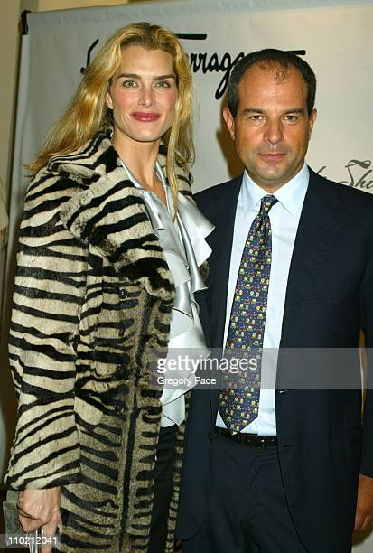 "Brooke Shields and Massimo Ferragamo during Brooke Shields' ""Welcome Back to Broadway"" Party Hosted By Massimo Ferragamo in New York City, New York,..."