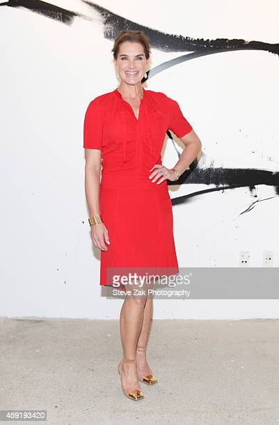 Brooke Shields attends AOL's BUILD Speaker Series Presents Brooke Shields with MAKERS Dyllan McGee at AOL Studios In New York on November 18 2014 in...