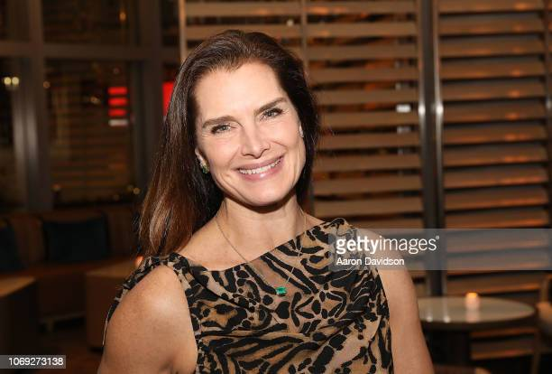 Brooke Shields attends Art Miami 2018 Lifetime Visionary Award Dinner Honoring Dennis Debra Scholl at Boulud Sud Miami on December 6 2018 in Miami...
