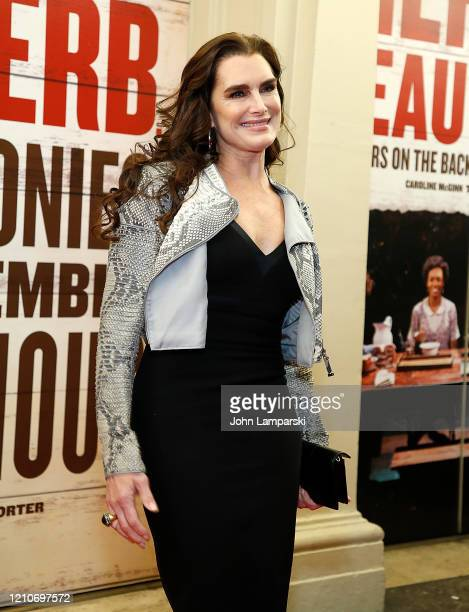 Brooke Shields attends Girl From The North Country Broadway opening night at Belasco Theatre on March 05 2020 in New York City