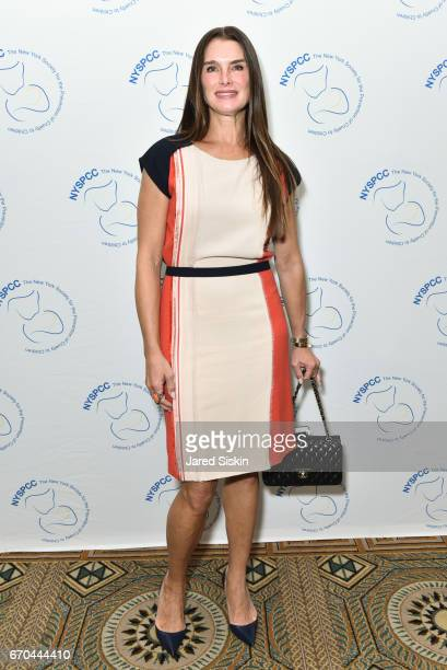 Brooke Shields attends New York Society for the Prevention of Cruelty to Children 2017 Spring Luncheon at The Pierre Hotel on April 19 2017 in New...