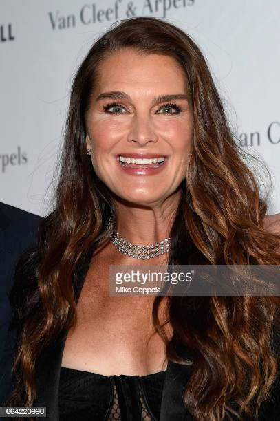 Brooke Shields New York City Home