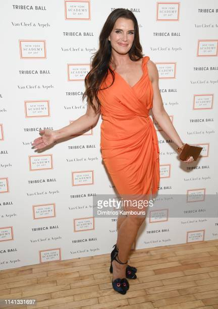 Brooke Shields attends the 2019 TriBeCa Ball at New York Academy of Art on April 08 2019 in New York City