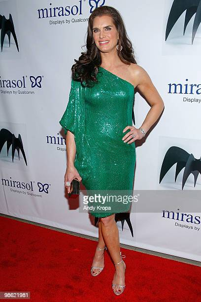 Brooke Shields attends the 45th Annual National Magazine Awards at Alice Tully Hall, Lincoln Center on April 22, 2010 in New York City.