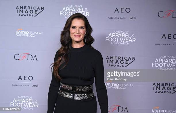 Brooke Shields attends the AAFA American Image Awards 2019 at The Plaza on April 15 2019 in New York City