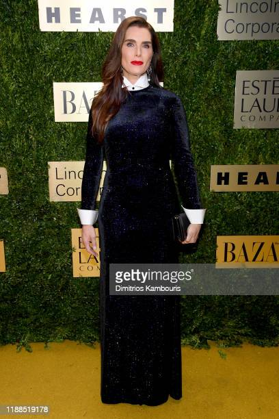 Brooke Shields attends the Lincoln Center Corporate Fashion Gala honoring Leonard A. Lauder at Alice Tully Hall on November 18, 2019 in New York City.